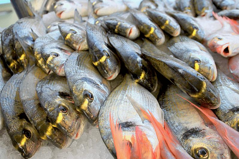 poissonnerie à nice